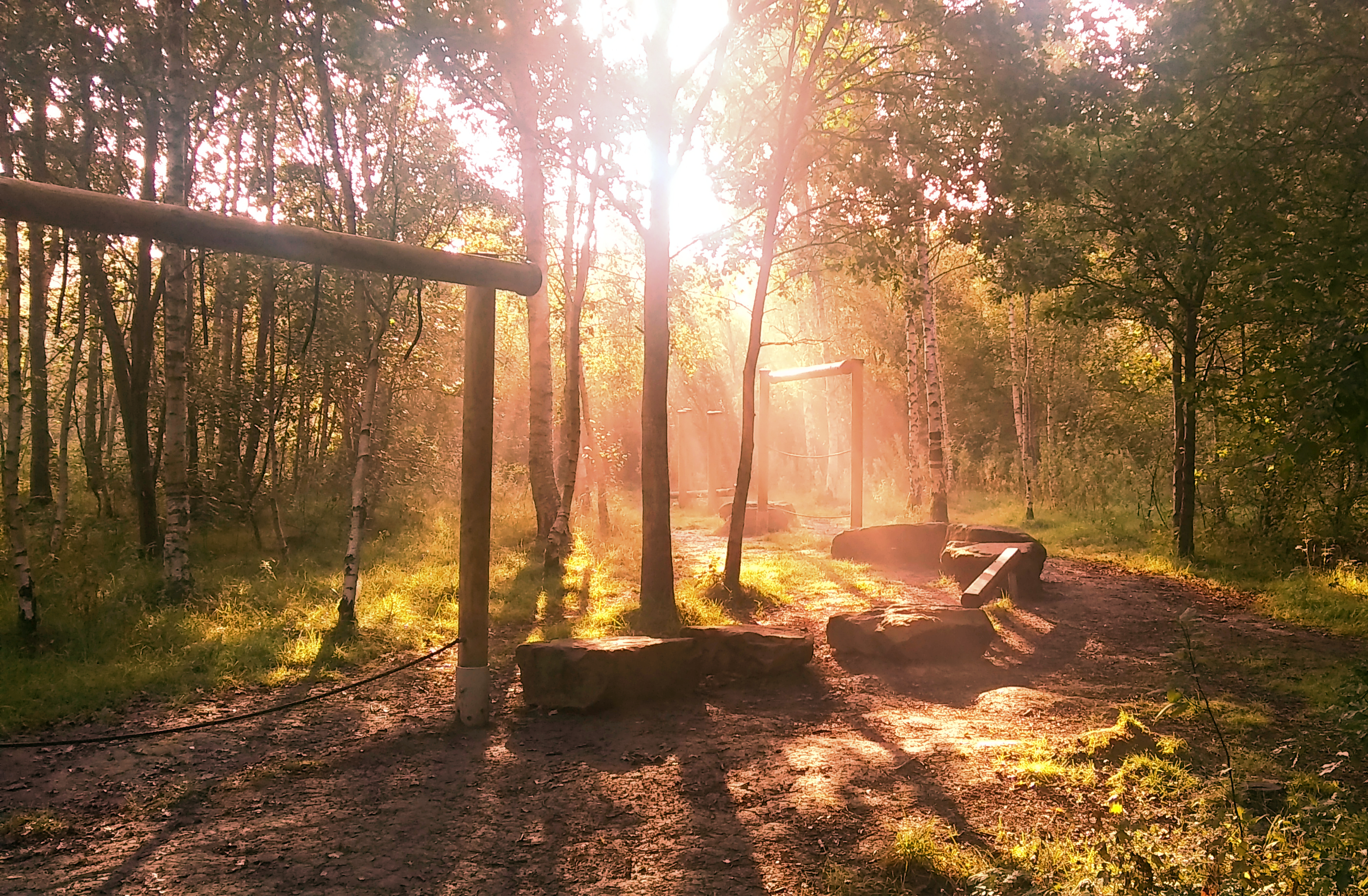 Sunshine breaking through trees onto wooden adventure trail equipment by Antony Stock